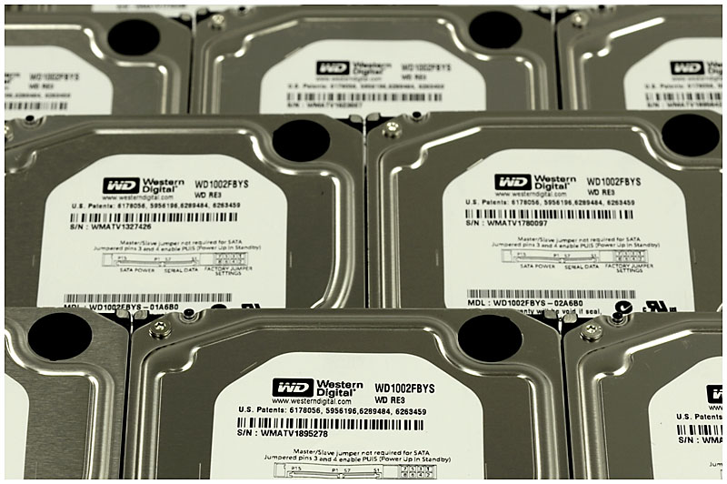 WD1002FBYS